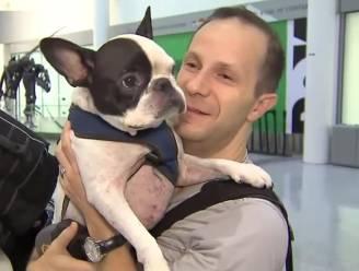 Canadese piloot maakt ommetje van 9.000 euro om hondje te redden