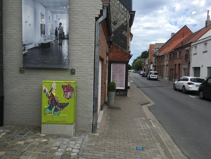 De rode draad van de werken is 'Fel Naturel': de stadsslogan van Lokeren.