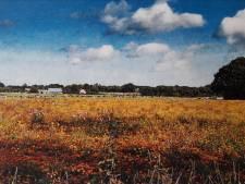 Archeologisch onderzoek hoeft in Rucphen meestal niet meer