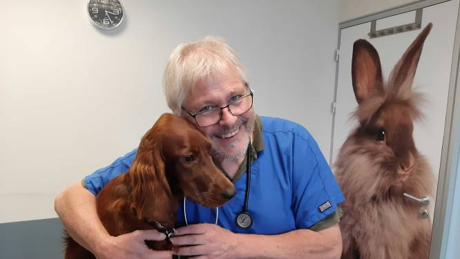 Dierenarts: 'Pas op dat je hond niet op coronazelftest kauwt, vloeistof in buisje is gevaarlijk'