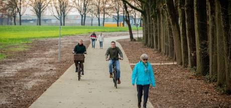 Wijchense politiek wil veilige fietspaden voor snelle e-bikes