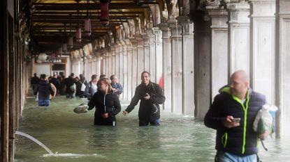 Venetië ernstig bedreigd door noodweer: zwaarste overstromingen sinds 1979