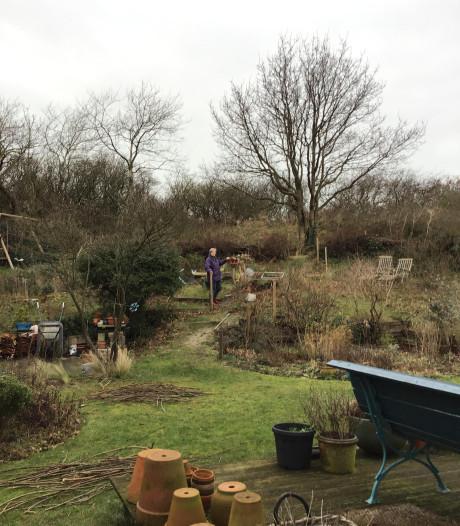 In het voorjaar is Marjolijn elke dag in haar tuin te vinden: 'Soms uren. Ik word daar niet moe van'
