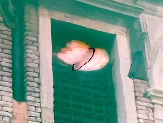Alsmaar helderder: zelfs kwal en krabben zichtbaar door schoon water in Venetië