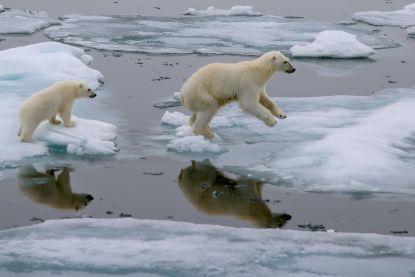 De wereld erkent klimaatverandering, maar wie betaalt voor de schade?