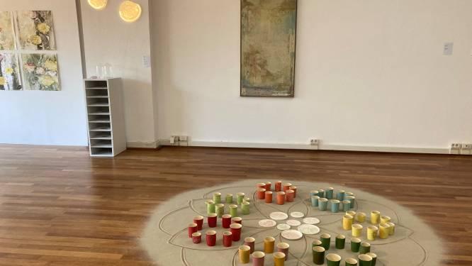 Expo 'FlowerPower' in Veldhoven smelt heden en verleden samen