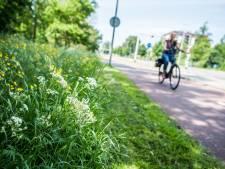 In Wierden willen ze meer ruige bermen: 'Beter laat dan nooit'