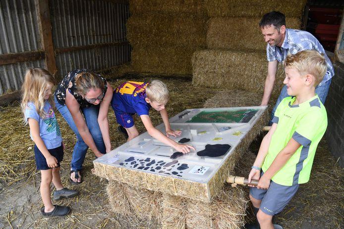 HOEVEN  Jan Stads / Pix4Profs  Voor de rubriek Van West-Brabantse bodem, foto's Rommens koeien. Corne en Corinne Gomers met op de spelfotos Corstian, Cortjan, Cornald en Corianne