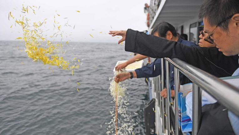 De vrouw van Liu Xiaobo werpt bloemen in zee tijdens het verstrooien van de as van haar man. Beeld afp