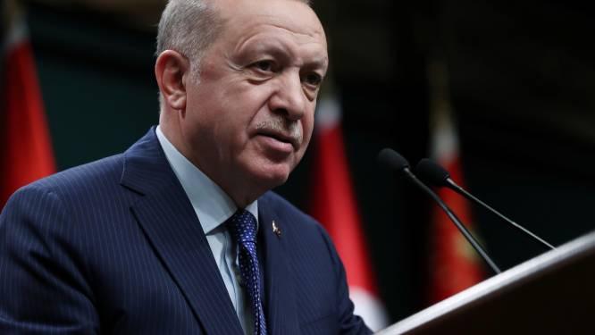 Erdogan biedt Oekraïne steun aan in escalerend conflict in Oost-Oekraïne