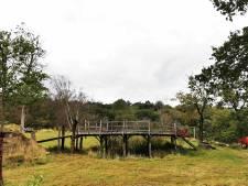 Le pont de Winnie l'Ourson vendu plus de 150.000 euros aux enchères