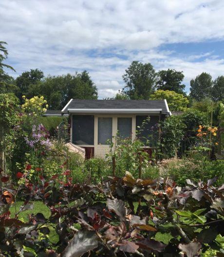 De tuin van Marjolein was eerst van haar moeder: 'Is een metafoor voor het leven'