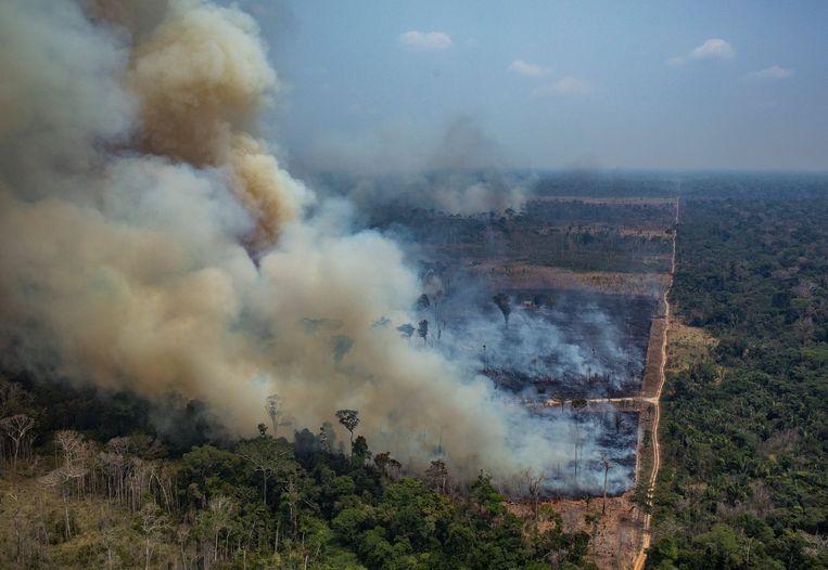 Rook stijgt op uit het Amazonegebied in het noordwesten van Brazilië.  Beeld AFP