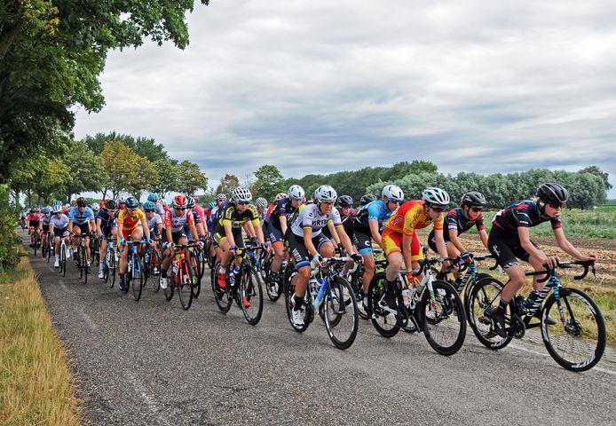 Het peloton van de BeneLadies Tour van 2019 trekt over de Maaidijk bij Oostburg.