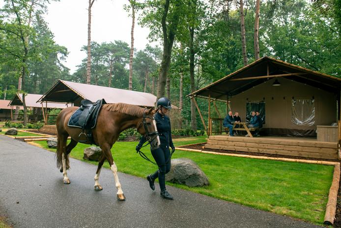 DS-2019-5333Ommen - Paarden op CampingBrigitte van Dijk met haar paard op camping Besthemerberg in Ommen.COPYRIGHT ALEX MULDER