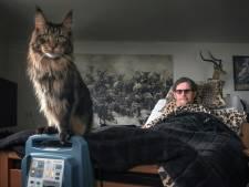 Fotograaf Ruben Schipper uit Harderwijk wint prijs bij Zilveren Camera