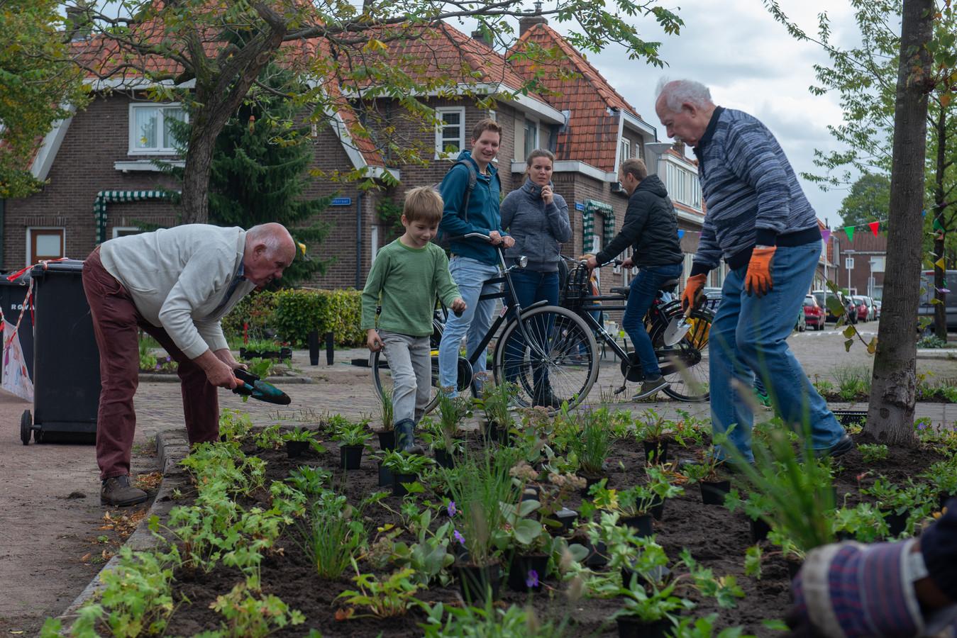 Bewoners in de Seringenstraat in Zwolle planten groen in de perkjes.