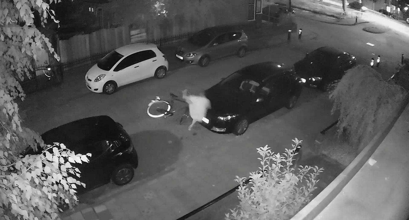 Een still van de video van de politie Woerden