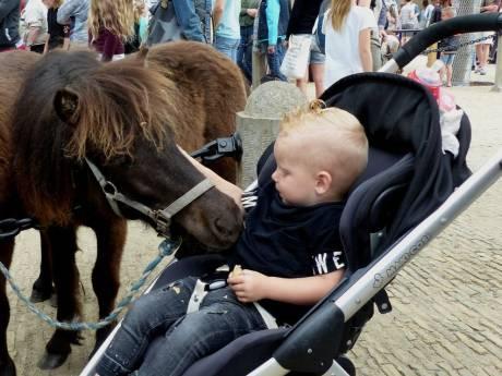 Topdrukte bij paardenmarkt Heenvliet: 15.000 bezoekers in het dorp