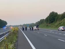 Schoten gelost en agenten gewond bij incident met 'verward persoon' op A73 bij Horst: snelweg weer open