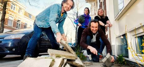 Wip jij ook de tegels uit je tuin? 'We hebben het vaak over hoe onze mini-tuintjes de buurt versieren'