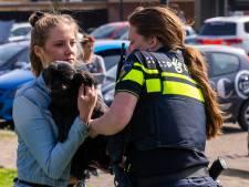 Gewonde bij brand in appartementencomplex Oss, huisdieren overleven