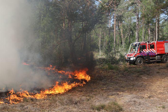 Een jaar geleden stond bij Bilthoven 250 vierkante meter bos in brand.
