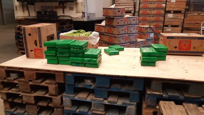 De politie trof 72 kilo cocaïne aan in een lading bananen in een loods in Hoogerheide. Dat bedrijfspand is nu voor de duur van een jaar gesloten en verzegeld.