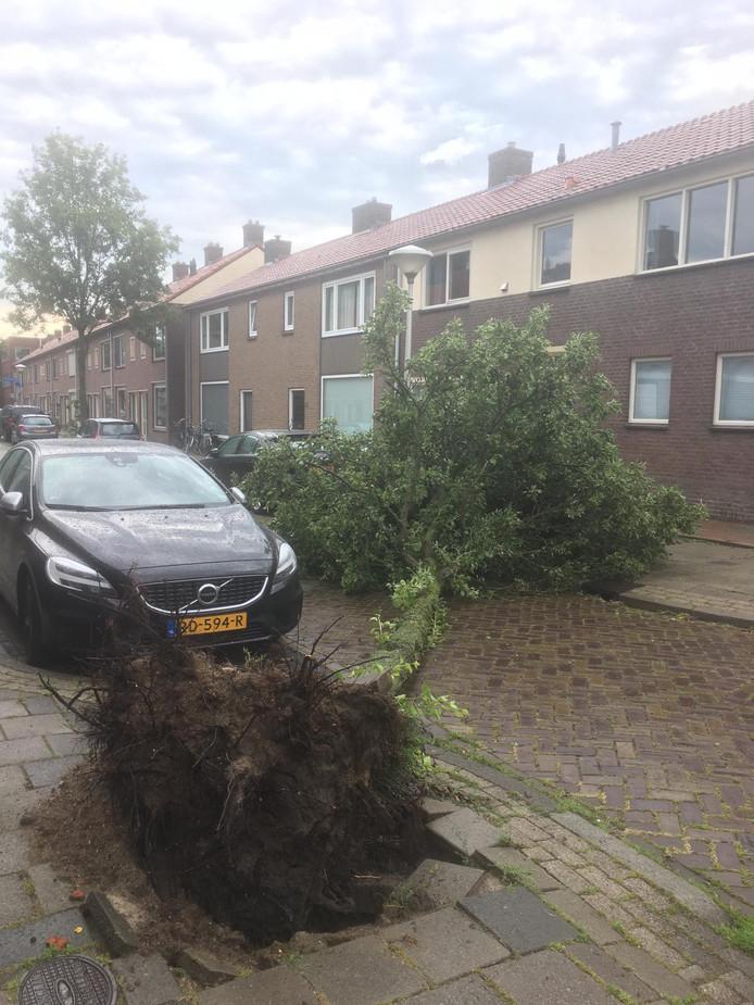 Godfriedstraat in Eindhoven
