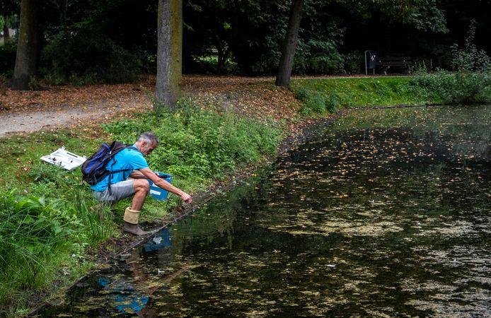Martin Boute van Boute Ecologie & Water Advies doet onderzoek naar de kwaliteit van water in Eindhoven.