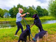 Margot helpt 'schoffies in een bomberjackie' met haar drie honden