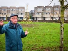 Buren gaan samen kaal grasveld Bolwerkplein in Steenwijk verbloemen en vergroenen