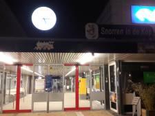 Vertraging treinen tussen Steenwijk en Meppel: boom valt om