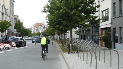 Was het nu 85.000, 25.022 of toch maar 5.000 euro? N-VA en sp.a in de clinch over kostprijs fietsenstallingen