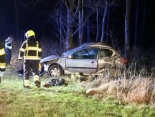 Auto komt op verkeerde weghelft en botst frontaal tegen boom in Zoelen