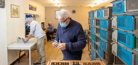 Topduif 'Stille Willie' verkoopt hij niet, al bieden ze duizenden euro's
