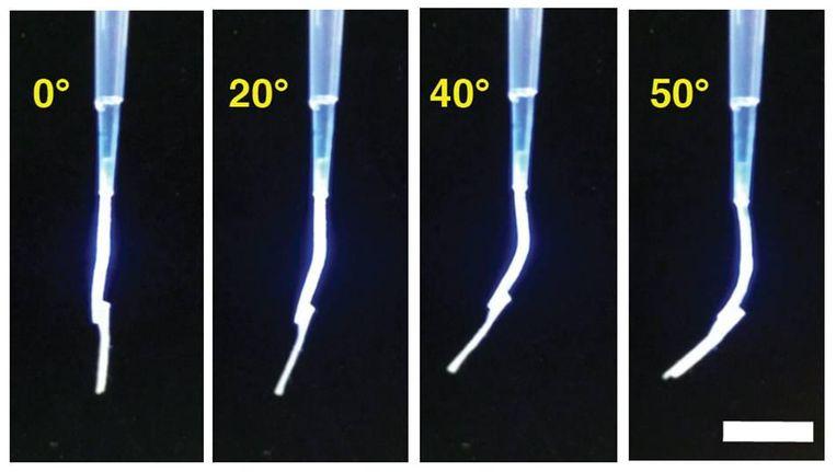 Foto's van Feringa's synthetische spier die een snippertje papier van een halve milligram optilt onder invloed van uv-licht van links. Beeld RUG