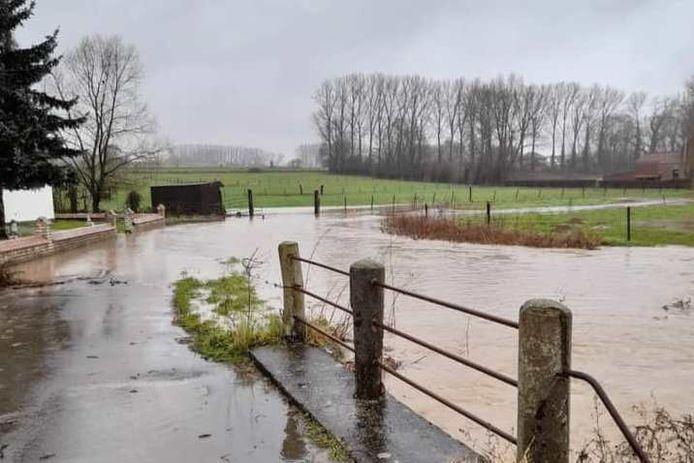 De lusvormige zijweg van de Ratmolenstraat in Aaigem staat onder water.