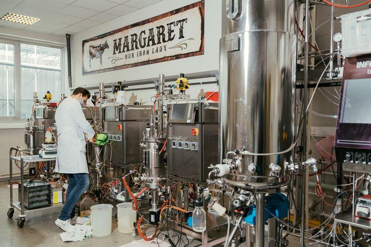 De bioreactor kreeg als bijnaam Margaret, de mechanische koe uit roestvrij staal. Beeld Illias Teirlinck