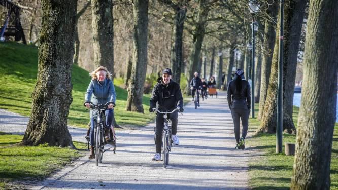 """Onderzoek op Brugse Vesten wijst uit: 661 bomen zijn ouder dan 100 jaar, 316 zelfs ouder dan 150: """"En we gaan er nog bijplanten"""""""
