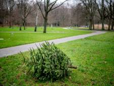 Kerstbomensoap: Lingewaard belooft beterschap