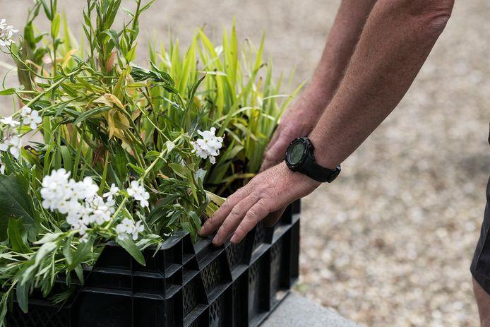Buurtbewoners en hoveniers gaan onder meer nadenken over beplanting en inrichting van het terrein.