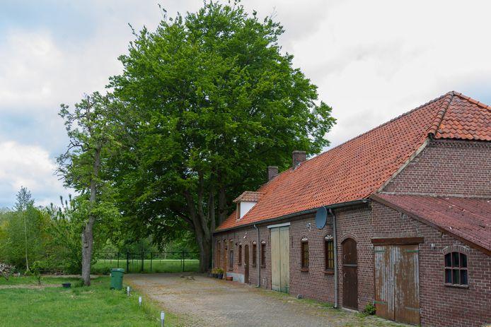 De boerderij moet wijken voor nieuwbouw, de bomen niet.