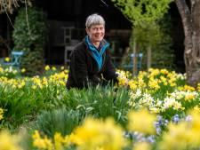 Een beetje meer kleur graag in de (moes)tuin: 'Lente in de moestuin maakt iedereen blij'