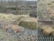 Staatsbosbeheer: stop met eigenhandig bijvoeren Oostvaardersplassen