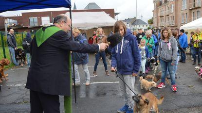 Ninovieters kunnen hun dier laten zegenen voor Werelddierendag en deelnemen aan 'Franciscan Call for Peace'