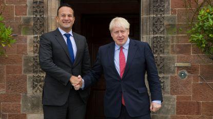 """""""Johnson wil eerst basisvrijhandelsakkoord"""": lichtpunt in brexit-onderhandelingen?"""