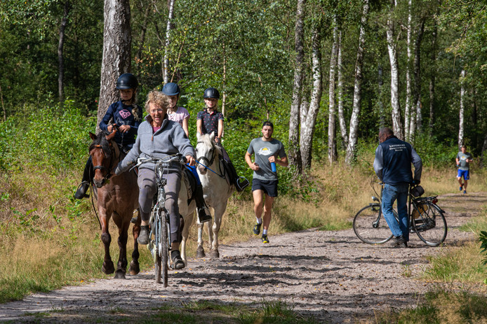 ▶ Sonja Steinz van Manege de Ponyvrienden in Hattem maakt met drie kinderen een uitstapje in het bos op de Vuursteenberg.
