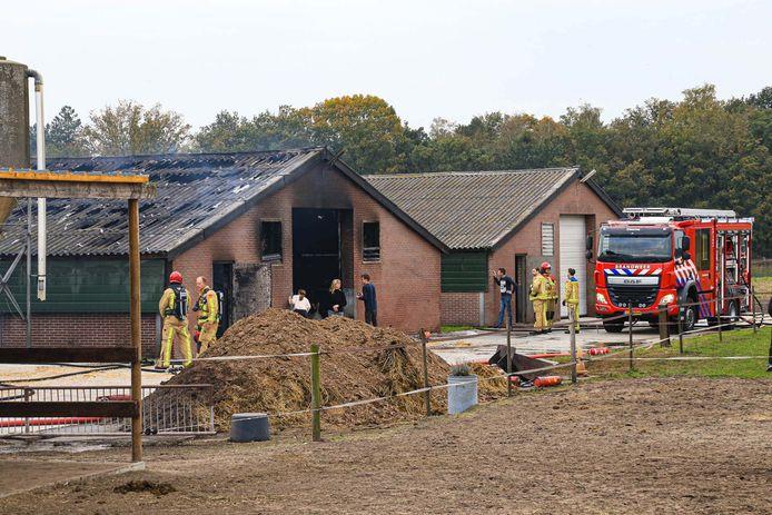 Brand in een lege kippenstal in Deurne.