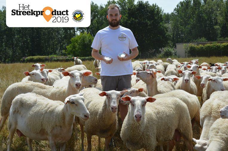 Laurens De Middeleer met zijn Vlaamse schapenplattekaas tussen zijn schapen.